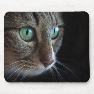 Cat with green eyes portrait on black mouse pad