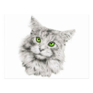 Cat with green eyes postcard