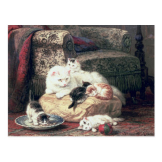 Cat with her Kittens on a Cushion Post Card