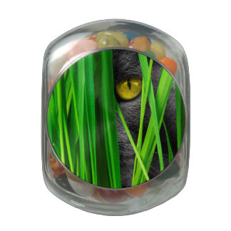 Cat with Leaf and Special Eyes Glass Candy Jar