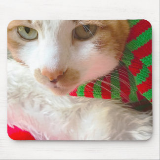 Cat with muffler and Santa hat Mouse Pad