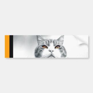Cat With Orange Power Eyes Bumper Sticker