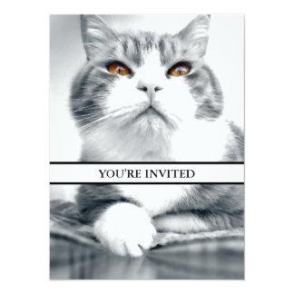 Cat With Orange Power Eyes Card