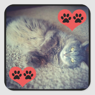 Cat with Pawprints Square Sticker