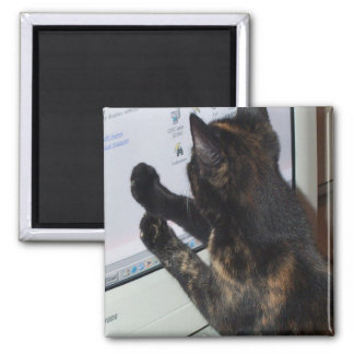 Cat with PC 2 Inch Square Magnet