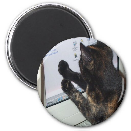 Cat with PC Refrigerator Magnets