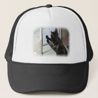 Cat with PC Trucker Hat