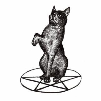 cat with pentagram sculpture