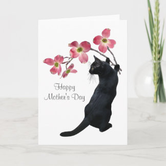 Cat with Pink Dogwood Flowers Mother's Day Card