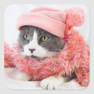 Cat with Pink Hat Square Stickers, Glossy Square Sticker