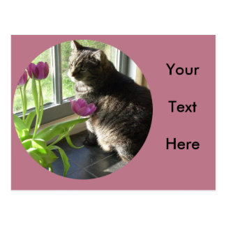 Cat with purple tulips-circle postcard