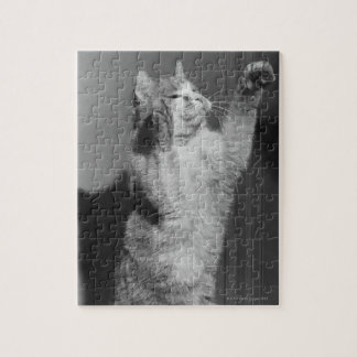Cat with raised paws (B&W) Puzzle
