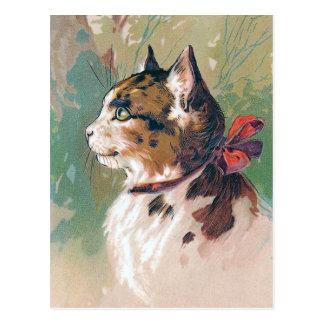 Cat with Red Ribbon Vintage Illustration Postcard