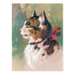 """""""Cat with Red Ribbon"""" Vintage Postcards"""