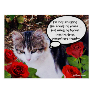 CAT WITH RED ROSES POSTER