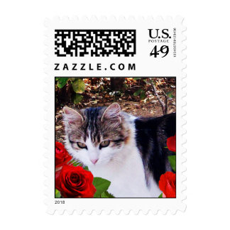 CAT WITH RED ROSES Valentine's Day Postage Stamps