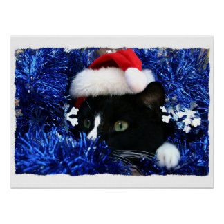 Cat with santa hat looking out from blue tinsel posters