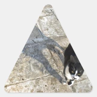 Cat with shadow walking towards camera triangle sticker