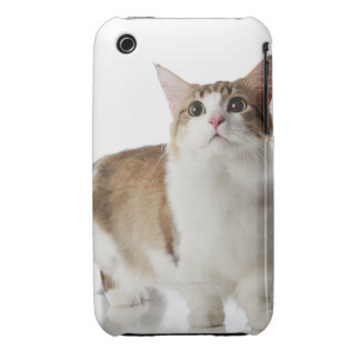 Cat with short feet iPhone 3 Case-Mate cases