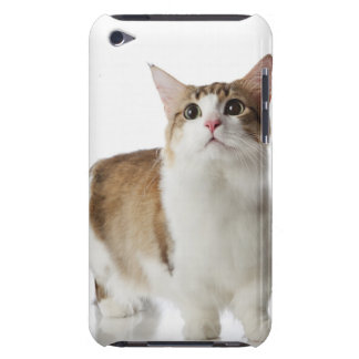 Cat with short feet iPod touch case