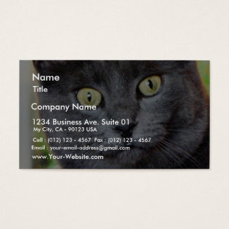 Cat With Staring Eyes Business Card