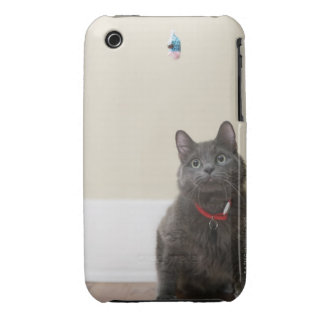 Cat with toy iPhone 3 Case-Mate case