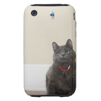Cat with toy iPhone 3 tough case