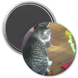 Cat with Toy Photo 3 Inch Round Magnet