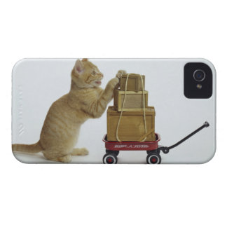 Cat with wagon and boxes Case-Mate iPhone 4 case