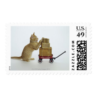 Cat with wagon and boxes stamp