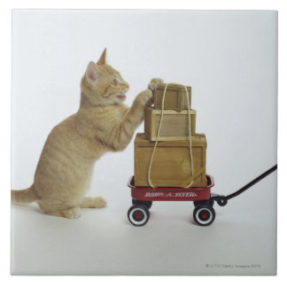Cat with wagon and boxes tile