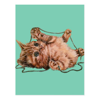Cat with Yarn Drawing of Pet Portrait Kitten Postcard