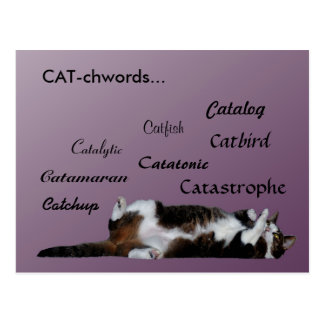 Cat words postcard
