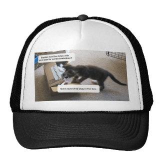 Cat World Domination Trucker Hat