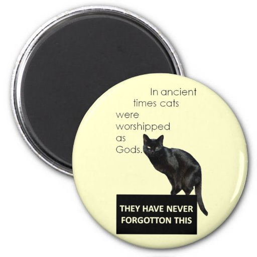 Cat Worship Magnets