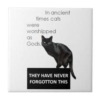 Cat Worship Tile