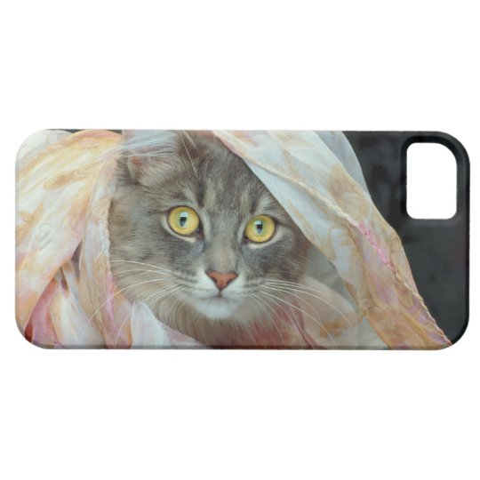 Cat wrapped in cloth iPhone SE/5/5s case
