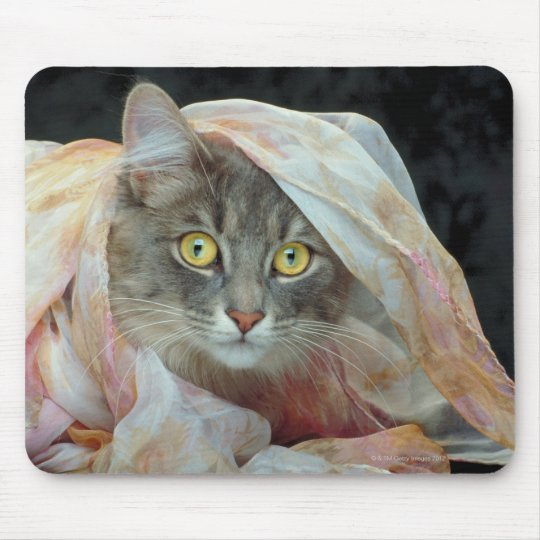 Cat wrapped in cloth mouse pad