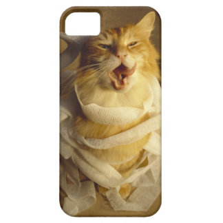 Cat wrapped in medical gauze iPhone SE/5/5s case