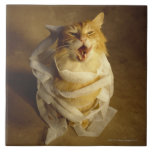 Cat wrapped in medical gauze large square tile