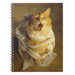 Cat wrapped in medical gauze notebook