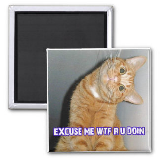 cat wtf 2 inch square magnet