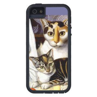 CAT Y GATITO - AMER TEMPRANO DE LA MADRE. iPhone 5 Case-Mate CÁRCASAS