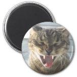 Cat Yawn 2 Inch Round Magnet