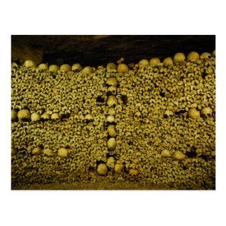 Catacombs of Paris Postcard