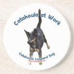 Catahoula Dog at Work Beverage Coaster
