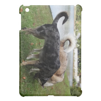 Catahoula Leopard Dog and Ausky Dog Sniffing Case For The iPad Mini
