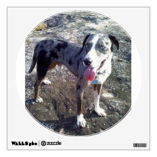 catahoula leopard dog Blue full.png Wall Decal