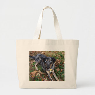 Catahoula Leopard Dog Laying Down Canvas Bag