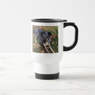 Catahoula Leopard Dog Laying Down 15 Oz Stainless Steel Travel Mug